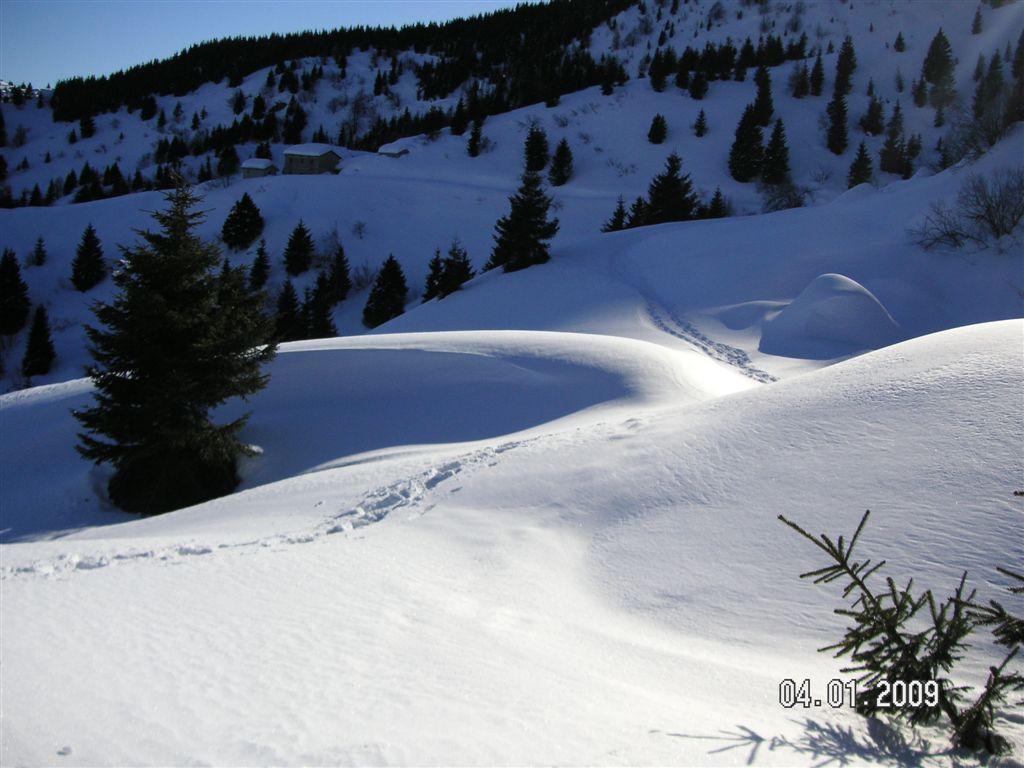 guzzella-04-01-2009-71