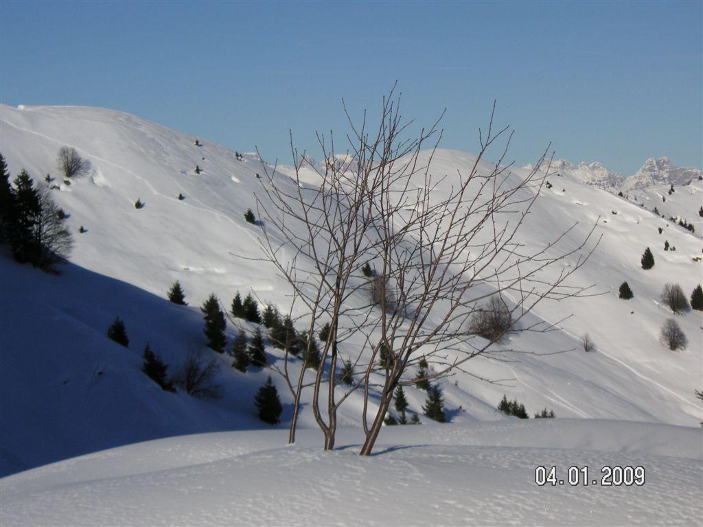 guzzella-04-01-2009-74