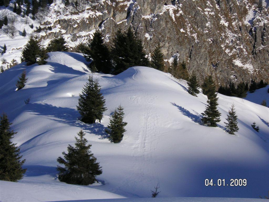 guzzella-04-01-2009-75