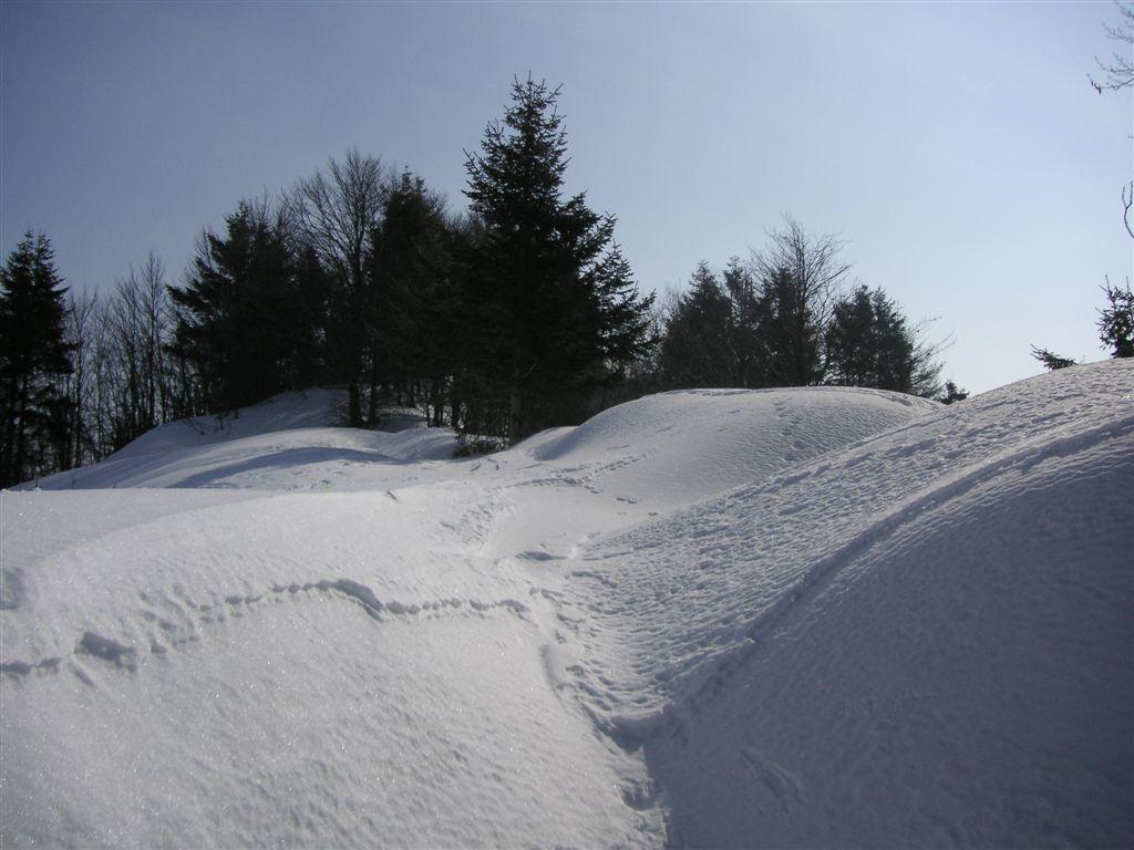 sass-brusai-22-02-2009-37
