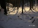 guzzella-04-01-2009-3