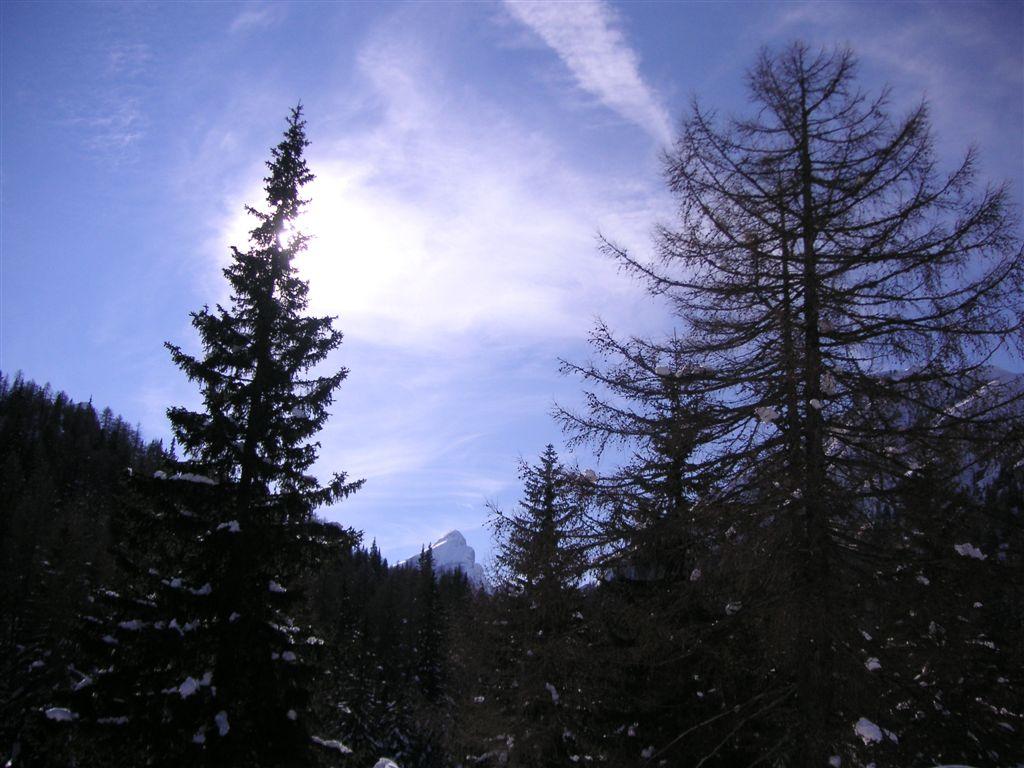 15-02-2009-1