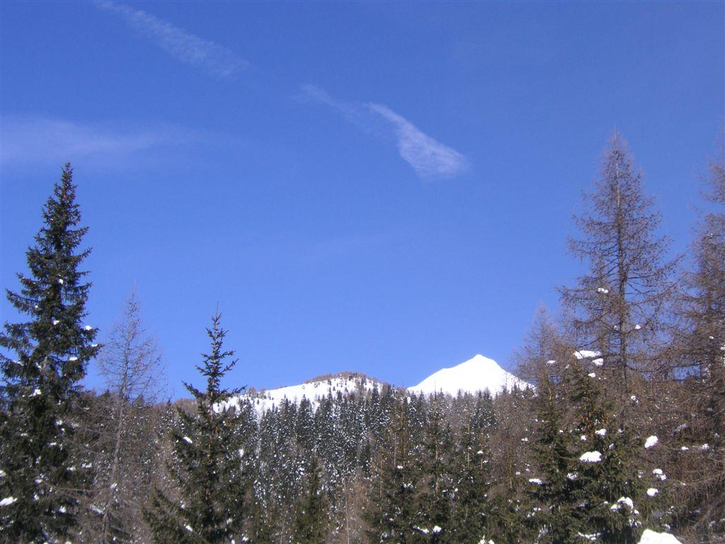 15-02-2009-4