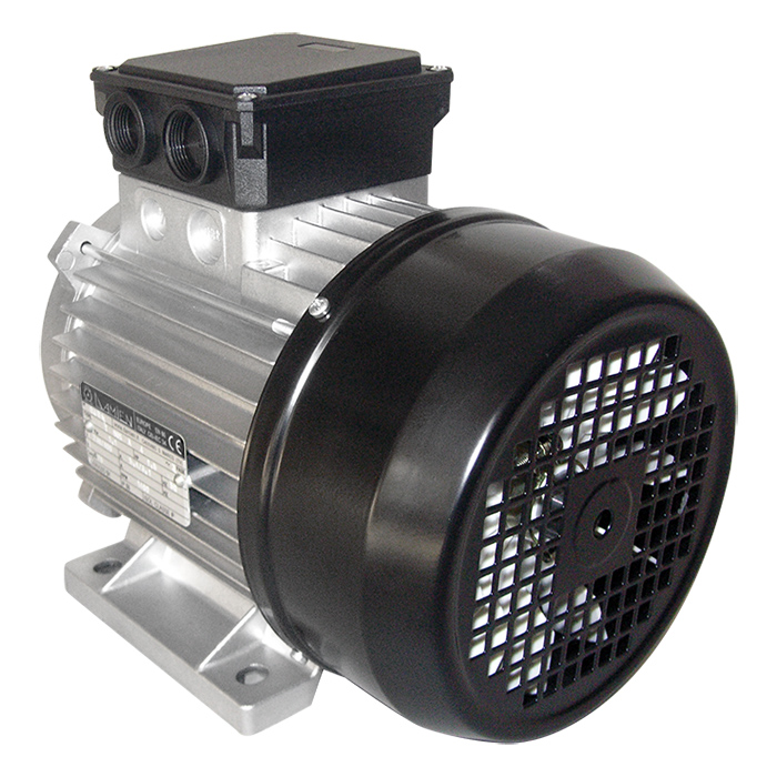 Motore elettrico trifase SERIE TT-TV