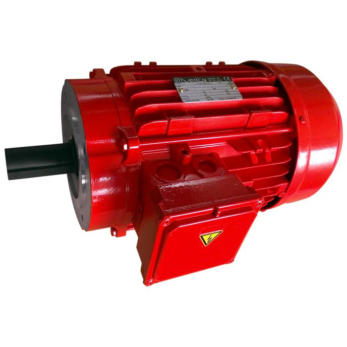 Motore elettrico trifase T100B14